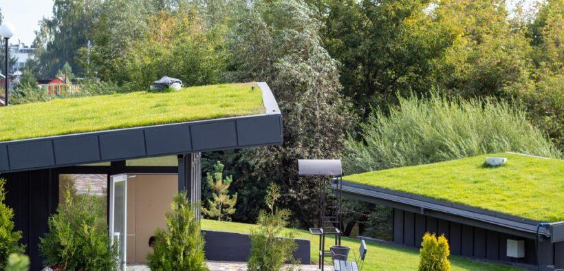 Groene daken duurzaam en praktisch